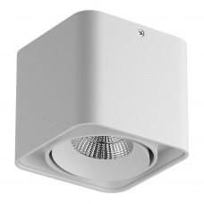 052316-IP65 Светильник MONOCCO LED10W 600LM 30G БЕЛЫЙ 3000K (в комплекте)